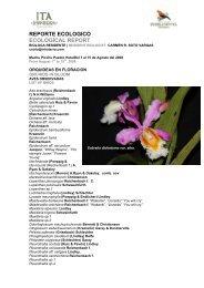 REPORTE ECOLOGICO ECOLOGICAL REPORT - Inkaterra