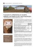 Veileder med forskrift 2012 - Fylkesmannen.no - Page 6
