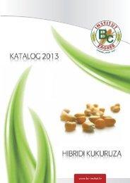 KATALOG BC HIBRIDA 2013 - BC Institut