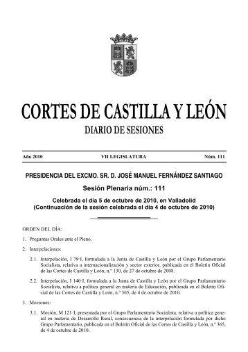DS(P) - Cortes de Castilla y León