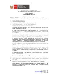 AYUDA MEMORIA DEPARTAMENTO DE PUNO ... - provias nacional