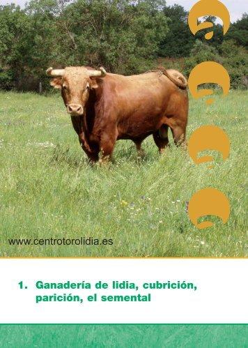 Ganaderia de lidia, cubricion, paricion, el semental - Centro ...