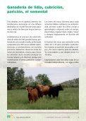 Ganaderia de lidia, cubricion, paricion, el semental - Centro ... - Page 3