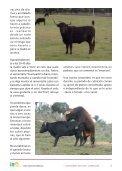 Ganaderia de lidia, cubricion, paricion, el semental - Centro ... - Page 5