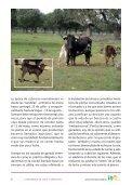 Ganaderia de lidia, cubricion, paricion, el semental - Centro ... - Page 6