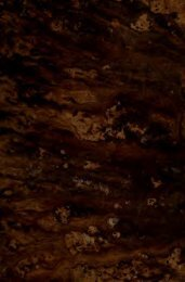 Silveira : poema heroico, em quatro cantos