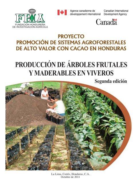 Producci n de rboles frutales y maderables en viveros fhia for Viveros de arboles frutales en chihuahua
