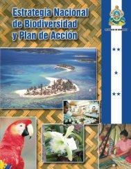 estrategia nacional I-V - Agenda Forestal Hondureña