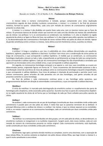Meiose – BioCel Cursinho ATHO Profa. Rebeca Alves Baseado em ...