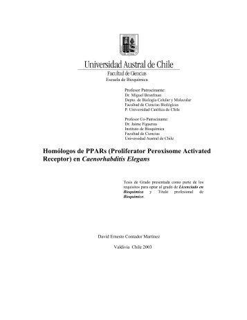 Homólogos de PPARs (Proliferator Peroxisome Activated Receptor ...