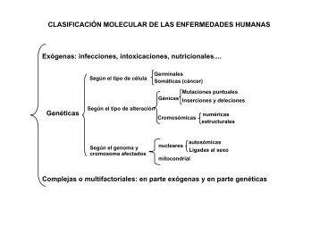 CLASIFICACIÓN MOLECULAR DE LAS ENFERMEDADES ...