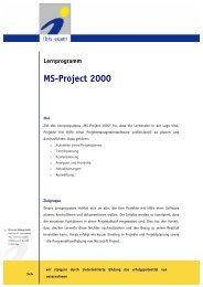 Ms-Project 2000