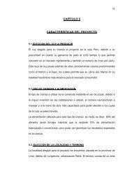 CAPÍTULO 5 CARACTERÍSTICAS DEL PROYECTO - Cybertesis