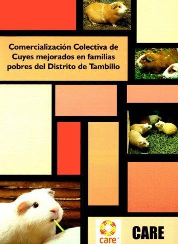 Experiencias Exitosas de Comercialización Colectiva en Ayacucho
