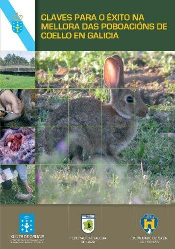 Claves para o éxito na mellora das poboacións de coello en Galicia