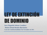 Extinción de Dominio IV - Corte de Constitucionalidad