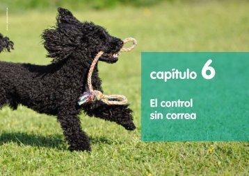El control - Xavi Burgos