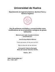 ji - Universidad de Huelva