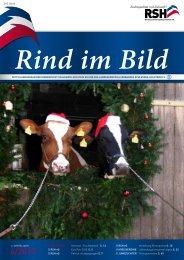 // Rind im Bild 4/2010 1 - Rinderzucht Schleswig-Holstein e.G.