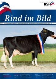 // Rind im Bild 1/2010 1 - Rinderzucht Schleswig-Holstein e.G.