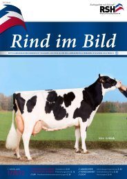 // Rind im Bild 1/2012 1 - Rinderzucht Schleswig-Holstein e.G.
