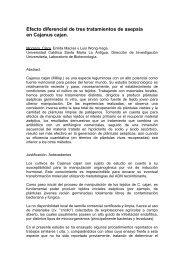 Efecto diferencial de tres tratamientos de asepsia en ... - USMA