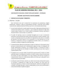 PLAN DE GOBIERNO REGIONAL 2011 – 2014