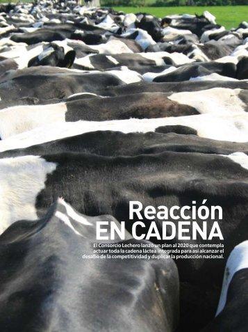 Reacción EN CADENA - Consorcio Lechero