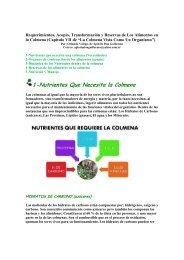 1-Nutrientes Que Necesita la Colmena