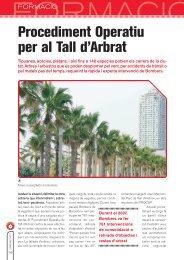 Procediment operatiu per al Tall d'Arbrat (PDF) - Ajuntament de ...