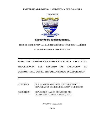 Nieto - Figueroa MDPCIV0091.pdf