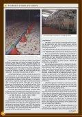 En cabeza en el mundo de la codorniz - Avicultura - Page 2