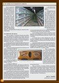 En cabeza en el mundo de la codorniz - Avicultura - Page 4