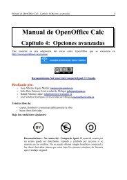 Manual de OpenOffice Calc. Capítulo 4.Opciones avanzadas