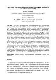 Cálculo da área de drenagem e perímetro de sub-bacias do ... - CPRM