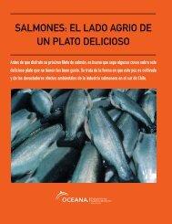 SALMONES: EL LADO AGRIO DE UN PLATO DELICIOSO - Oceana