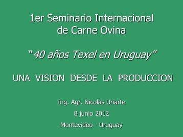 Una visión desde la producción - Ing. Agr. Nicolás Uriarte - Inia