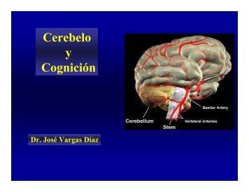 Cerebelo y Cognición
