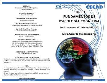 CURSO FUNDAMENTOS DE PSICOLOGíA COGNITIVA