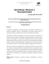 Aprendizaje, Memoria y Neuroplasticidad - Ciberdocencia