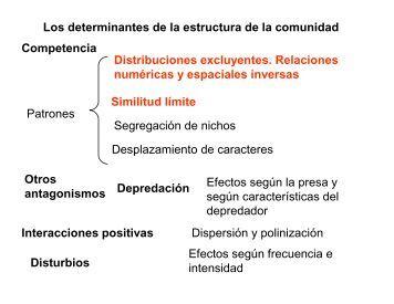 Los determinantes de la estructura de la comunidad Competencia ...