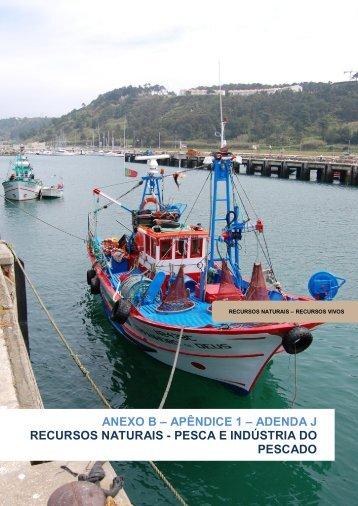 Recursos Naturais / Pesca e Indústria de Pescado - Direção-Geral ...