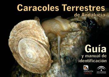 caracoles terrestres de Andalucía - Junta de Andalucía