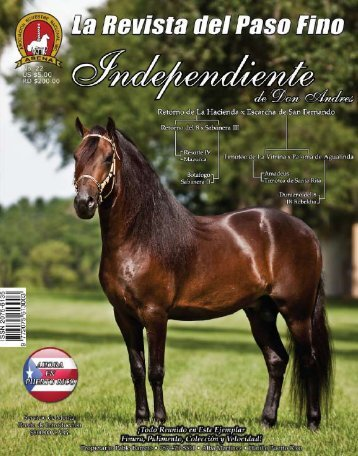 El Gran Reto II - La Revista del Paso Fino