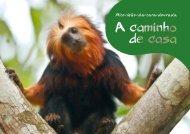 Mico-leão-da-cara-dourada - Governo do Estado do Rio de Janeiro