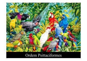 Ordem Psittaciformes