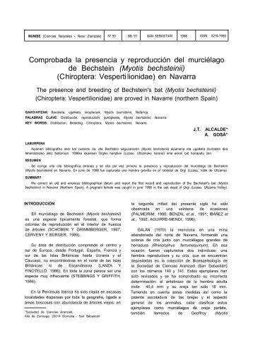 Myotis bechsteinii - Aranzadi