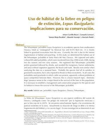 Uso de hábitat de la liebre en peligro de extinción, Lepus flavigularis