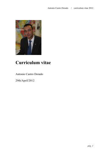 Afip.gov.ar cargar curriculum vitae