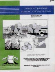 Desarrollo sustentable cosecha y poscosecha de papa - Agronet
